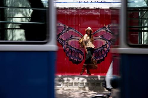 butterfly, tram version (by Dreamer7112)
