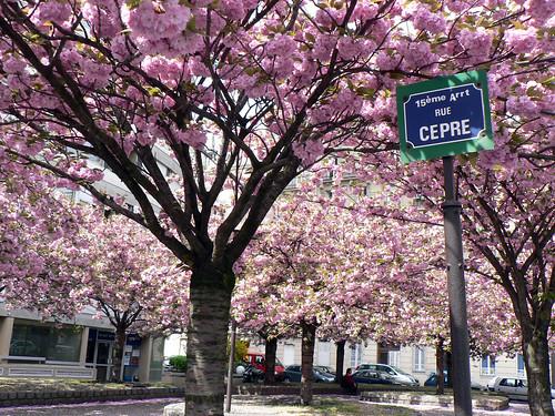 April in Paris (by Claudecf)