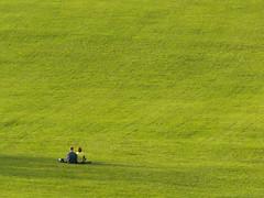 The Big Lawn by digiguy