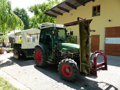 Christianshof: Weinbergsrundfahrt bei Selzen