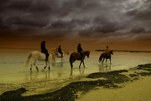 """Riders in the storm • <a style=""""font-size:0.8em;"""" href=""""http://www.flickr.com/photos/91404501@N08/31799477951/"""" target=""""_blank"""">View on Flickr</a>"""