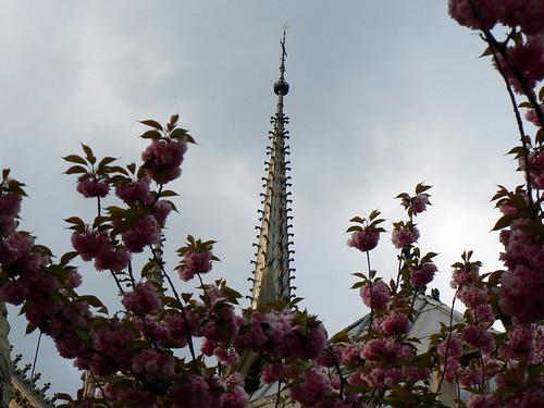 Notre-Dame de Paris (by Claudecf)