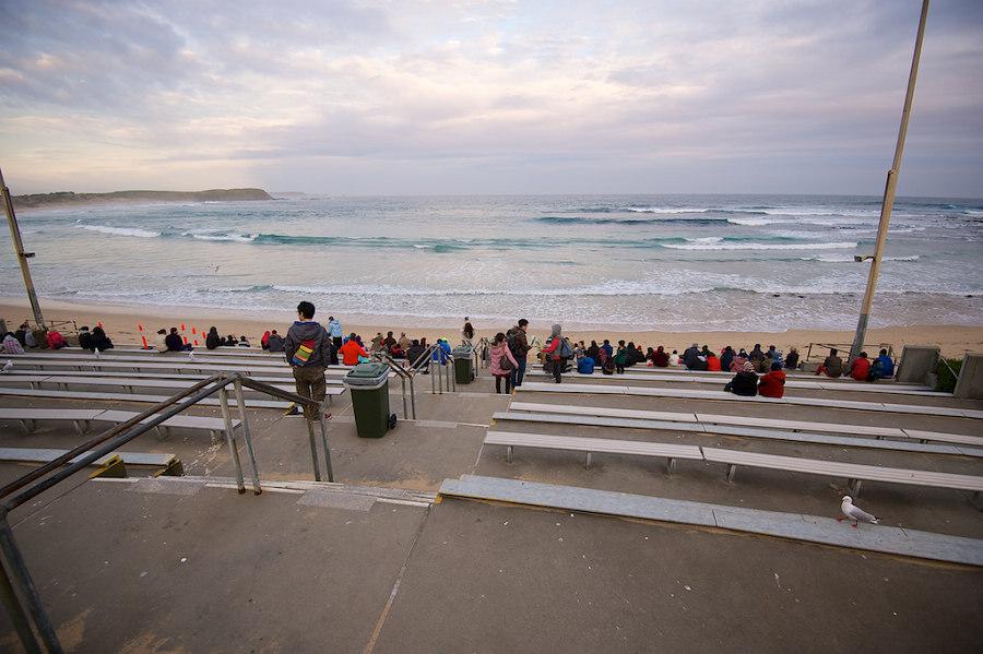 芊芊澳洲親子遊~菲利普島企鵝歸巢(Penguin Parade Phillip Island):世界最小神仙小企鵝集體回家,神奇的排隊走路 ...