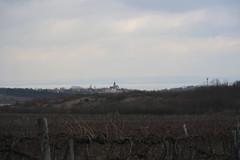 The Balaton