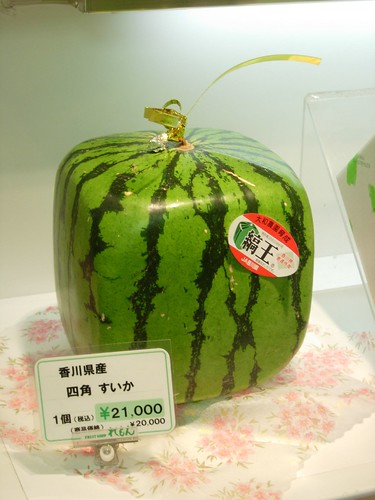 Square Watermelon! by solution_63.