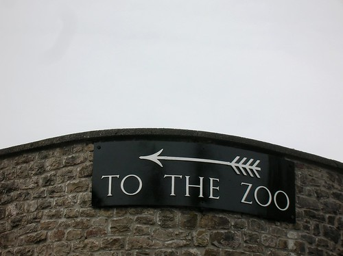 <---<<< TO THE ZOO by rbrwr, on Flickr