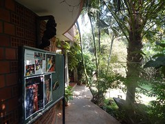 The Legend Kuchipudi Dancer Dr. Vyjayanthi Kashi's Shambhavi School of Dance Outside Photography By Chinmaya M.Rao  (222)