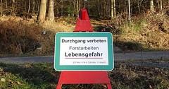 """Das Schild. Die Schilder. Genauer: Das Verbotsschild. Die Verbotsschilder. Hier darf man nicht in den Wald, weil Bäume gefällt werden. • <a style=""""font-size:0.8em;"""" href=""""http://www.flickr.com/photos/42554185@N00/31413267804/"""" target=""""_blank"""">View on Flickr</a>"""