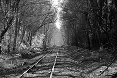 Decatur Railroad tracks BW by HamWithCam