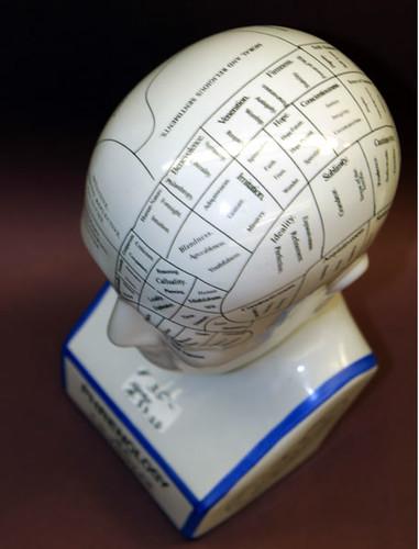 Top of the phrenology head