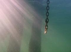 Underwater chain and light
