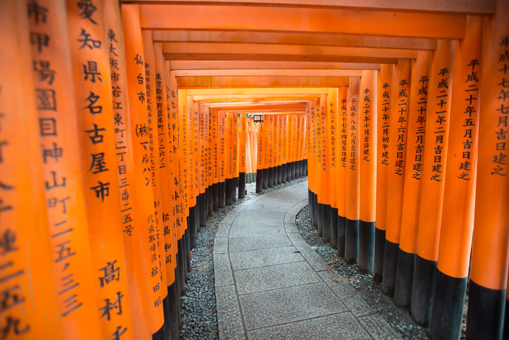 The orange Torii gates