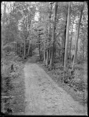 Charles  Macnamara, Road to Marshall's Bay (1903)
