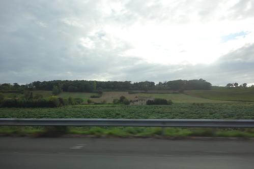 De nouveau des vignes, mais cette fois, plus de Bordeaux !