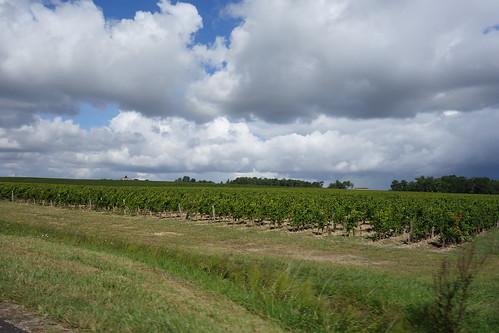 Toujours en territoire viticole