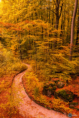 Sanspareil im Herbst-2