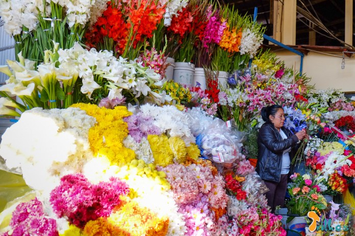 Peru - Mercado de São Pedro - 8