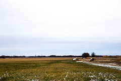 KansasThanksgiving-2521.jpg