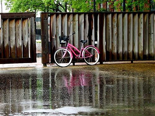 The Prettiest Bike