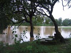 Kollibacchalu Dam -Malenadu Heavy Rain Effects Photography By Chinmaya M.Rao   (129)