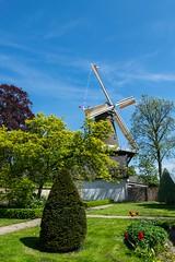 """Korenmolen de Hoop (Cornmill """"The Hope"""")"""