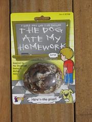The Dog Ate My Homework 1
