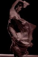 Shimmering Flamenco