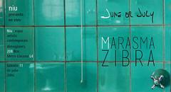 2015/07/11 Marasma zibra @ Niu