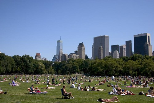 Sunbathers in central park