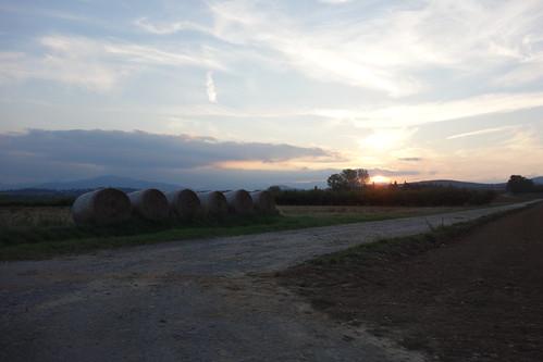 Ballots de paille au soleil couchant