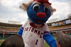 Potomac Nationals Mascot Uncle Slam