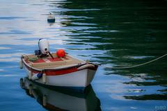 La barque de Brigneau
