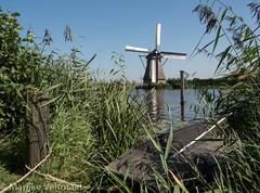 Kinderdijk 1