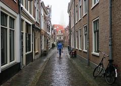 Haarlem streets