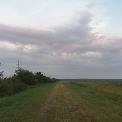 The Road Ahead. Day 118. Path off of Rt. 90 outside Iowa, LA. Getting a somewhat early start to the day, should be able to get some decent mileage in before it gets too hot. #theworldwalk #travel #wwtheroadahead