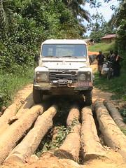 RDC 019