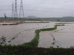 Kollibacchalu Dam -Malenadu Heavy Rain Effects Photography By Chinmaya M.Rao   (154)