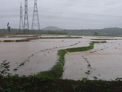 Kollibacchalu Dam -Malenadu Heavy Rain Effects Photography By Chinmaya M.Rao   (154)