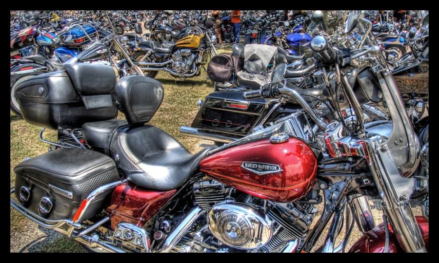 Sea of Harleys