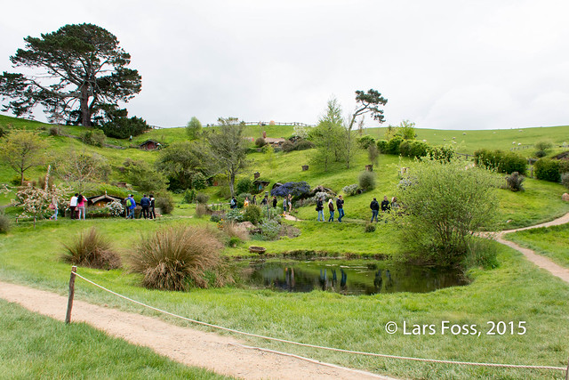 Detail from Hobbiton