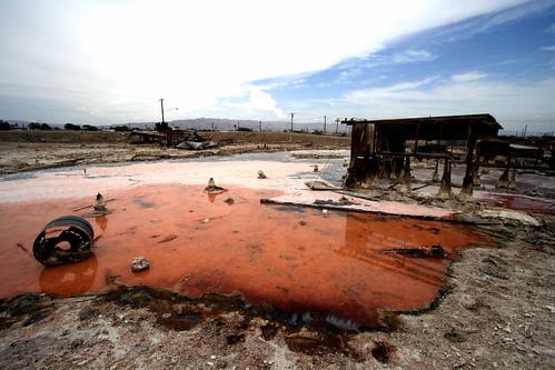 Toxic Coast