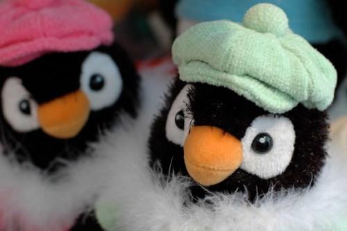 Penguins in hats