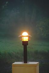 A beacon...