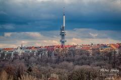 Žižkov tower
