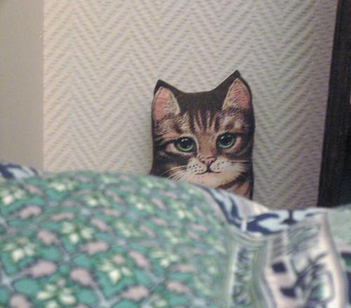 Fake cat