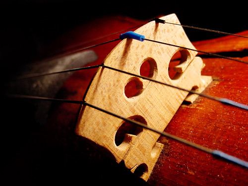 The Violin: Bridge