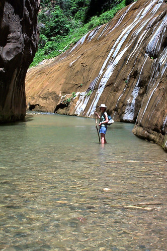 UT Zion - The Virgin River Narrows