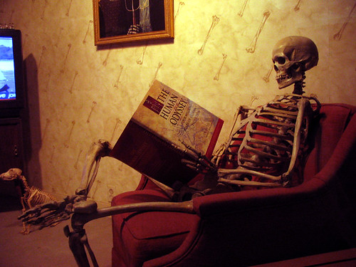 Reading Skeleton