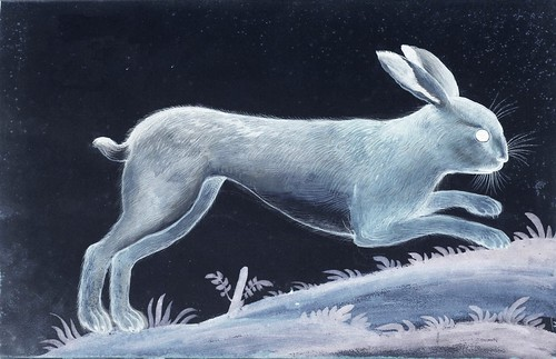 """The Lunar Rabbit • <a style=""""font-size:0.8em;"""" href=""""http://www.flickr.com/photos/15706268@N04/26945472658/"""" target=""""_blank"""">View on Flickr</a>"""