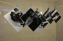 Darkroom Prints